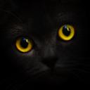 get.blackcatcard.com